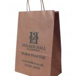 plain brown paper bags